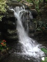 Waterfalls (Fan-T) Tags: hotel waterfall nashville tennessee opryland