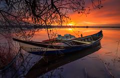 Catinês, Sunrise - Ria de Aveiro (paulosilva3) Tags: sunrise canon de eos boat lee filters ria aveiro waterscape 6d proglass