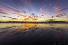 Evening symphony.... (sibijohn fotos) Tags: sunset auckland muriwai muriwaibeach sibijohnfotos sibijohn