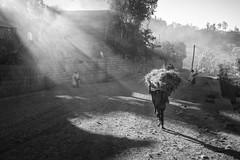 Long as I Can See The Light (departing(YYZ)) Tags: africa road street morning travel light shadow people blackandwhite zeiss rural 35mm walking outside person countryside shine village sony ground hay fe ethiopia alpha bundle angelic a7 carry lalibela lightray bushel lightbeam diry sonnartfe35mmf28za