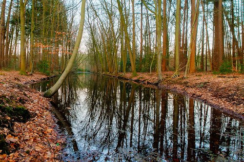"""leuvenumsebos • <a style=""""font-size:0.8em;"""" href=""""http://www.flickr.com/photos/56274740@N08/16568952045/"""" target=""""_blank"""">View on Flickr</a>"""