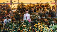 Spring Festival Fair 2015 (SouthernSky24601) Tags: guangzhou zeiss raw zoom sony adobe fullframe alpha za ultrawide a7 canton lightroom  oss carlzeiss   cmos arw   mirrorless  vsco variotessart   emount  opticalsteadyshot  e ilce7  fe1635 sel1635z