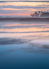 Fog on the Marsh (Charles Opper) Tags: morning winter sky mist color reflection nature water fog clouds sunrise canon georgia landscape dawn swamp marsh canon70200mm canon7d blackbeardcreek bulltownswamp