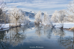 Drop In Cold Water (Max Fellermann) Tags: trees winter mist mountains reflection water landscape bayern bavaria frost nebel drop berge fogg kochelsee loisach