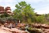 Another Oasis in the Desert - Upper Jump (jpmckenna - Tenquille Lake Up Next) Tags: utah hiking backpacking canyonlandsnationalpark canyonlands desertlandscape getoutside needlestraverse