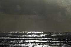 te ara moana (Jerryhattric) Tags: newzealand wild storm waves southisland aramoana surfsup leaden westcoastnz tasmanocean panasoniclumixfz200 tearamoana