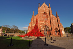 St Magnus Cathedral & Poppies (E Mlr) Tags: islands orkney cathedrals poppies kirkwall