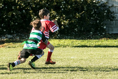 20160709_0846_7D2-200 Ethan about to score in the corner (johnstewartnz) Tags: 7dmarkii canonapsc edgarmacintoshpark hornbrrfc maristalbion ripparugby 70200 70200mm 7d2 canon eos ethan rugby yabbadabbadoo