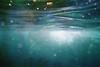(埃德溫 ourutopia) Tags: film kodak kodakfilm waterproof singleusecamera 800 filmphotography analog analogphotography sea ocean water waves bubbles underwater blue swimming diving longdong filmsoak filmsoup soupfilm dyedfilm フィルム
