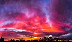 RED SKIES IN THE MORNING (Laws Photography   www.lawsphotography.com) Tags: morning trees red panorama color beautiful silhouette clouds sunrise canon landscape colorful melbourne panoramic redskies canon6d melbournesunrise sunrisepanoramic lawsphotography vaughanlaws vaughanlawsphotography