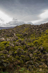 Berserkjahraun 37 (raelala) Tags: 2016 berserkjahraun snaefellsnes snaefellsnespeninsula canon1785mm crater europe europeantravel iceland icelanding2016 lava lavafield photographybyrachelgreene ringroad roadtrip scandinavia thatlalagirl thatlalagirlphotography thatlalagirlcom travel