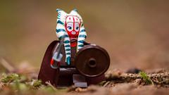 Shaak Ti Solveigsdotter (Reiterlied) Tags: 105mm bergen d5200 dslr jedi lego legography lens macro minifig minifigure nikon norway photography prime reiterlied shaakti sigma starwars stuckinplastic toy viking