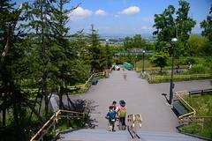 2016 北海道D6 4x6 3168 (chaochun777) Tags: 北海道 旭山 動物園 露營 自由行 猴子 長臂猿 猩猩 雲豹 花豹 老虎 獅子 北極熊 企鵝