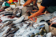 Man prepare fish for sale (Evgeny Ermakov) Tags: asia asian georgetown malaysia penang southeast southeastasia culture fish fresh freshness hand ice local man market marketstall marketplace raw sale salesman scales seafood sell seller selling stall street streetmarket traditional typical vendor weigh weighing wetmarket