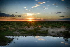 Olifantrus Sunset (zenseas : )) Tags: olifantrus etosha sunset sun colour etoshanationalpark namibia africa holiday vacation africansunset sky clouds reflections waterhole olifantruswaterhole