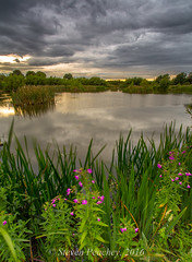Willows Pond (Steven Peachey) Tags: pond willowspondwingate countydurham stevenpeachey lightroom5 sky clouds reflections ef1740mmf4l canon6d leefilters lee09gnd