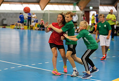 HandballMesterliga-9 (Sommereventyret) Tags: merker sommereventyret periode2 2016 hndball mesterliga finaler premieutdeling
