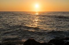 Good Morning (Art Sarnese Photography) Tags: nikon d3300 nikond3300 afsdxnikkor35mmf18g 35mm beach sunrise morning ocean shore ocnj oceancity newjersey nj