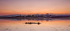 Island (Through Bri`s Lens) Tags: sussex shorehambysea riveradur tollbridge swan reflection lancingcollege brianspicer canon5dmk3 canon1635f4