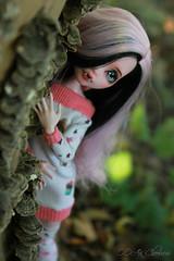 IMG_0188 (Cleo6666) Tags: monsterhigh monster high draculaura deluxe ooak repaint custom mattel doll