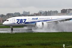 All Nippon Airways Boeing 787-8 Dreamliner JA808A (Steven Weng) Tags:  canon eos7d2 taiwan taipei     aircraft aviation rcss tsa all nippon airways boeing 7878 dreamliner ja808a