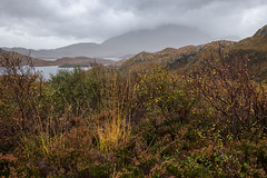 Assynt in the Rain (Tom_Drysdale) Tags: loch assynt lochiver wester ross autumn suilven westerross drum light