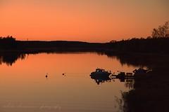 Autumn sunset / Atardecer de otoo (suominensde) Tags: puestadelsol vehmaa finland finlandia outdoor sunset ocaso atardecer sky cielo dusk oscuridad mar sea serene sereno boat barco pier muelle boya buoy reed caa