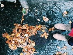autumn has come. (belle.fleur) Tags: autumnhascome changingleaves chasingautumn shehascome puddlesofleaves autumnleaves autumnmonamour seasonsarechanging todayisfuture rainyautumndaywithatintofred raincoat ekuqjatrbondhedemin vjeshtakaardhur vjeshtmeshidhepardesytkuqe gjethevjeshte ditmeshi astoria tetor october2016 alidajolie