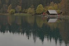 inizia a piovere (conteluigi66) Tags: riflesso acqua lago bosco alberi albero laghetto pioggia goccia gocce gocciolare gocciare luigiconte