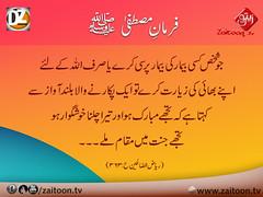 28-10-16) dz group (zaitoon.tv) Tags: mohammad prophet islamic hadees hadith ahadees islam namaz quran nabi zikar