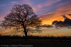 Sunset@Walton.jpg (Photosensitive6) Tags: sunset warrington walton