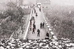 Beijing Tour 2014 (nora_amarmin) Tags: china winter snow cool beijing dramatic snowing snowfall snowshower phototravel photojurnalism