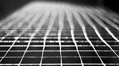 Come With Me Now (○gus○) Tags: net rete blur sfocato sfuocato 50mm f18 ʂ