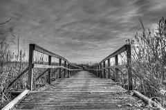 Boardwalk to nowhere (Chris Noronha) Tags: blackandwhite white black long exposure boardwalk ajax shores hdr lynde photomatix