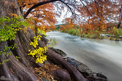 Oranges, Greens, and Yellows (J. Moore Outdoor Photography) Tags: park color tree fall water long exposure state falls cypress pedernales silky sapling