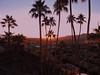 Sunrise Overlooking Palm Springs DSCN0314 (2) (mshnaya ☺) Tags: california city trees light sky sun nature colors sunrise landscape dawn palmsprings palm springs silhoutte 太阳 美国 阳光 加洲