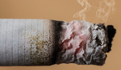 IMG_8627 (Pernyi Gbor) Tags: macro cigarette dcr250 raynox raynoxdcr250