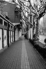 DSC_0110 (tamas.doczi) Tags: china nikon shanghai jingan 中国 上海 d3200 静安区