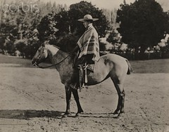 la fotografa Harriet Chalmers Adams, muestra Chile de 1920 (santiagonostalgico) Tags: chile ranch people horse plants tree male men latinamerica southamerica hat animals mammal outdoors one clothing adult boots farm profile fulllength footwear cottonwood cape daytime rancher sideview poncho oneperson oldfashioned headgear midadult midadultman traditionalclothing poplartree oneanimal blackpoplar vintagecollection 1920sstyle surfacelevel periodphotography