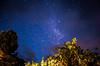 Sur de Chile (jonath.riquelme) Tags: 東京 s2is fusion independenceday düsseldorf radar gp jazzfestival werchter palacio naturescenes roskildefestival e500 newmindspace throughtheviewfinder bubblebattle msh0706 bokehsonicejuly06 roskildeelecciones