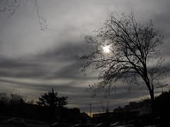 feliz  martes de Nubes!!!!♫
