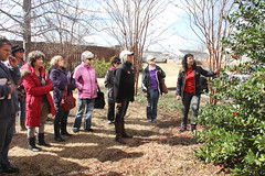 Pruning workshop (UGA College of Ag & Environmental Sciences - OCCS) Tags: campus small engines bodie uga horticulture griffin pruning pruners horticulturist pennisi ugagriffincampus ugahorticulturistbobwesterfield