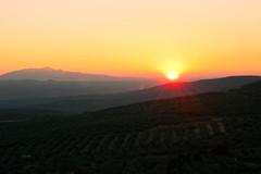 Atardecer desde los miradores de beda (damargo1983) Tags: light sunset sky naturaleza sun mountains luz sol nature landscape atardecer landscapes paisaje cielo campo jaen montaa naranja beda olivares