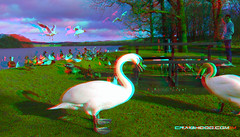 Photo of Gartmorn dam (3d view with red/blue glasses)