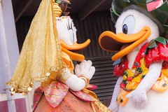 Table Is Waiting / Dockside Stage / Tokyo DisneySea #TDS (haphopper) Tags: show costume stage performance disney donald entertainment daisy stageshow performers tokyodisneysea big5 tds disneycharacters tdr tokyodisneyresort big8 donalddaisy americanwaterfront docksidestage atableiswaiting