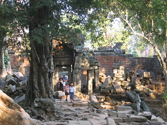 Forest Caused Ruins of Preah Khan