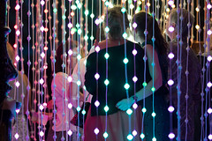 blinc - adelaide festival 2015 - squidsoup 3030903 (liam.jon_d) Tags: art public display digitalart australian illumination australia exhibition event squidsoup installation sa rotunda southaustralia survey elderpark thearts location4 submergence blinc adelaidefestival southaustralian billdoyle elderparkrotunda adlfest mostinterestingsaimset popularimset