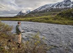 Delta WSR (mypubliclands) Tags: mountains alaska river landscape scenic blm bureauoflandmanagement bwick bucketlist wildandscenicriver seeblm blmbucketlist deltawsr