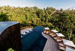 Hanging Gardens Infinity Pools (Travel Quintessence) Tags: ocean travel wild bali water pool canon indonesia eos hotel asia pretty paradise lagoon resort jungle palmtree tropical luxury infinitypool ubud plungepool travelphotography hanginggardens travelphotos watervilla privatepool 700d ubudhanginggardens lovetravel travelquintessence photographyquintessence