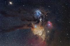 Rho Ophiuchi - Head of Scorpius - reprocessed (Claus Steindl) Tags: sky night canon way stars eos ii astrophotography pro milky ef m4 rho 6d scorpius 200mm lacerta antares f28l skywatcher mgen ophiuchi heq5 pixinsight astrometrydotnet:status=solved astromodified astrometrydotnet:id=nova1647881